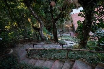 Minca Finca Hostal Bolivar Casa Mango stairs down to Casa Maracuya